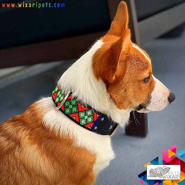 Collar para perro arte huichol