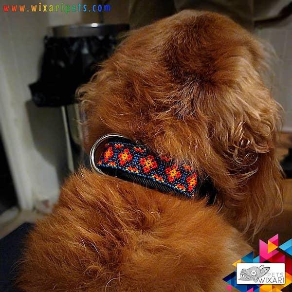 Collares de perro huichol